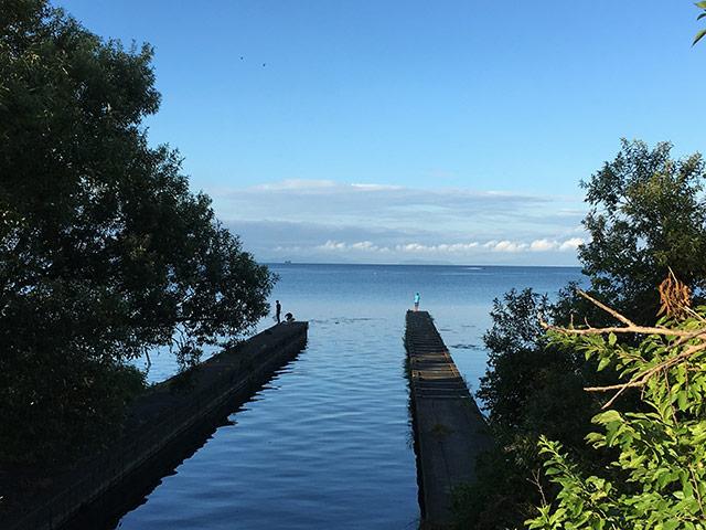 湖岸の風景