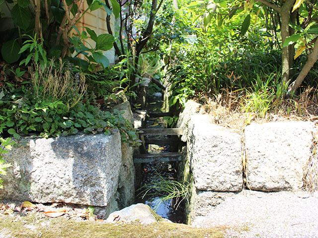 敷地の間の茂みの中に石積みの水路