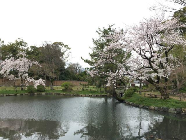 大通寺公園