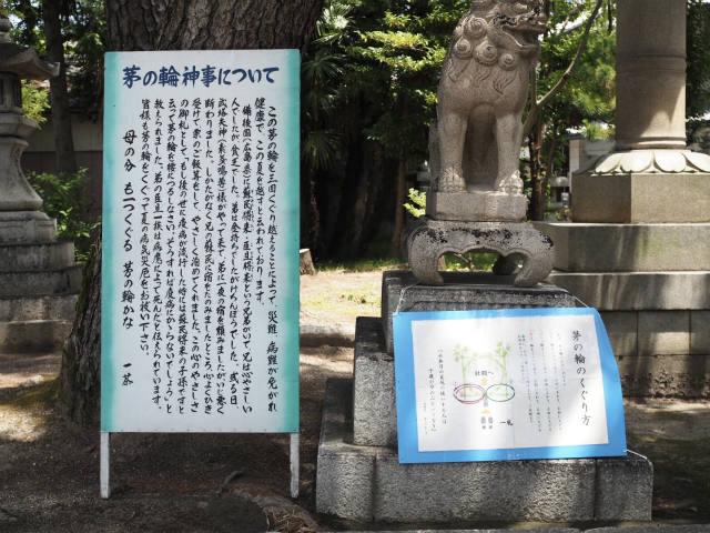 長濱八幡宮 茅の輪くぐり神事 (5)